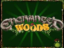 Enchanted Woods (Microgaming): игра с выводом средств