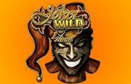 Игровой аппарат Joker Wild