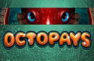 Игровой аппарат Octopays