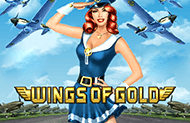 Игровой аппарат Wings Of Gold