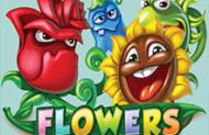 Джекпот онлайн автомата Цветы