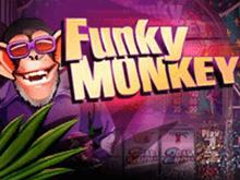 Funky Monkey от Playtech - игровой онлайн автомат с призами
