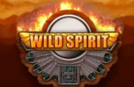 Wild Spirit от Playtech – игровой слот для бесплатной игры на автоматах