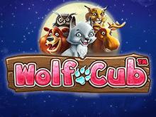 Азартная игра Wolf Cub от Netent — гарантия реального вывода денег на карту!