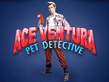 Ace Ventura от Playtech – игровой аппарат с бонусными предложениями