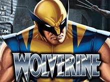 Выбирайте виртуальный демо слот Wolverine