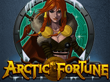 Арктическое Богатство: онлайн-игра с выводом от Microgaming